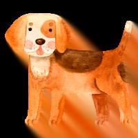 Flocky | Sacchetti igienici per cani