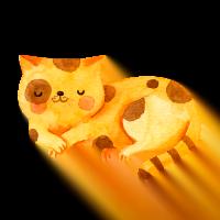 Flocky | Fodere per lettiere gatti